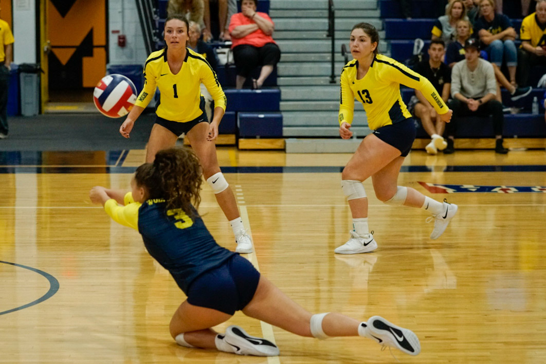Wolverines fall in WHAC opener to LTU