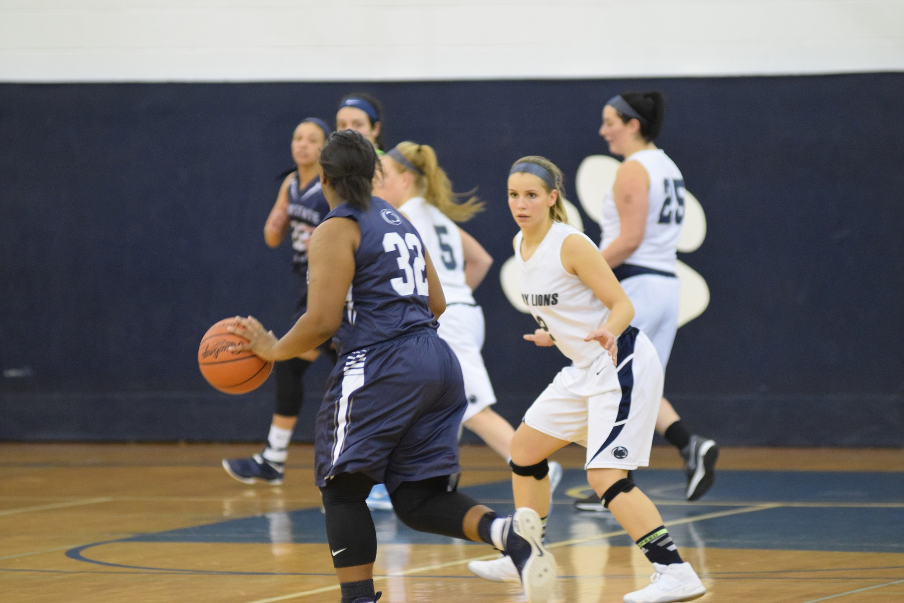 Lady Lions  dominated by #3 ranked Lehigh Valley.
