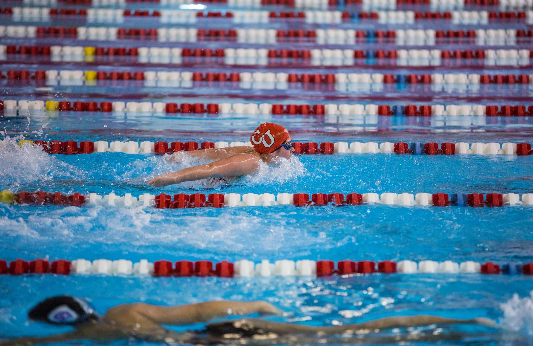 Swimming and Diving hosts Worcester City Championship