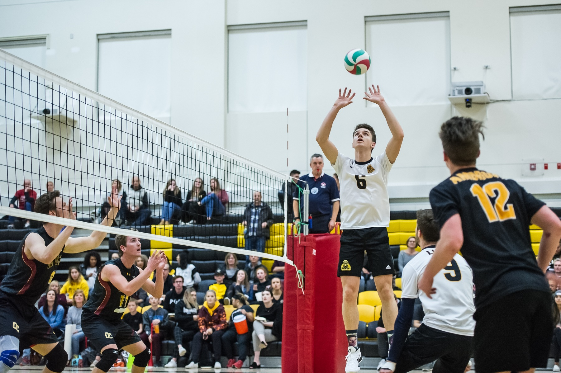 Lions Battle to the End In 5 Set Loss to Trojans