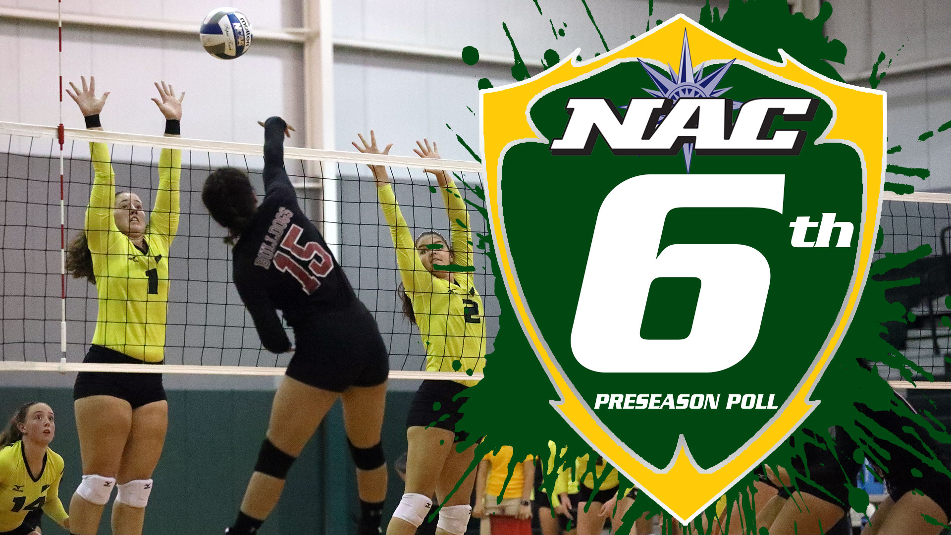 Women's Volleyball Voted Sixth in NAC Preseason Poll