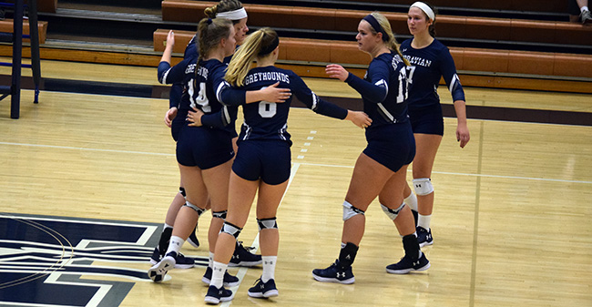 The Greyhounds celebrate winning a point in a match versus Susquehanna University.