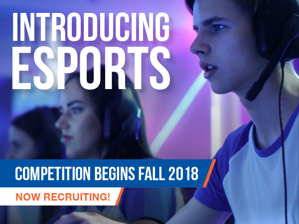 Hawkeye Community College to Launch Competitive Esports Program