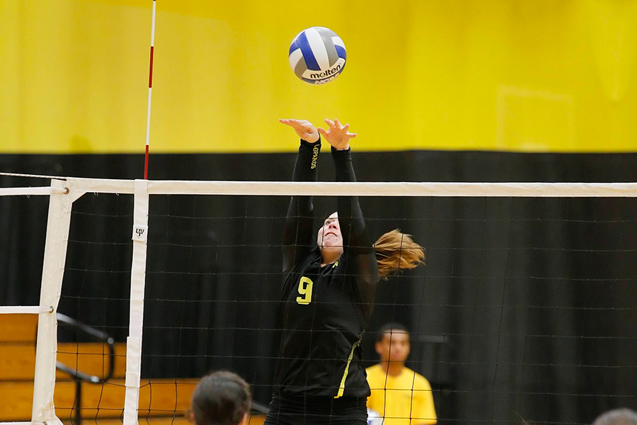 Women's Volleyball Rallies Past Simmons