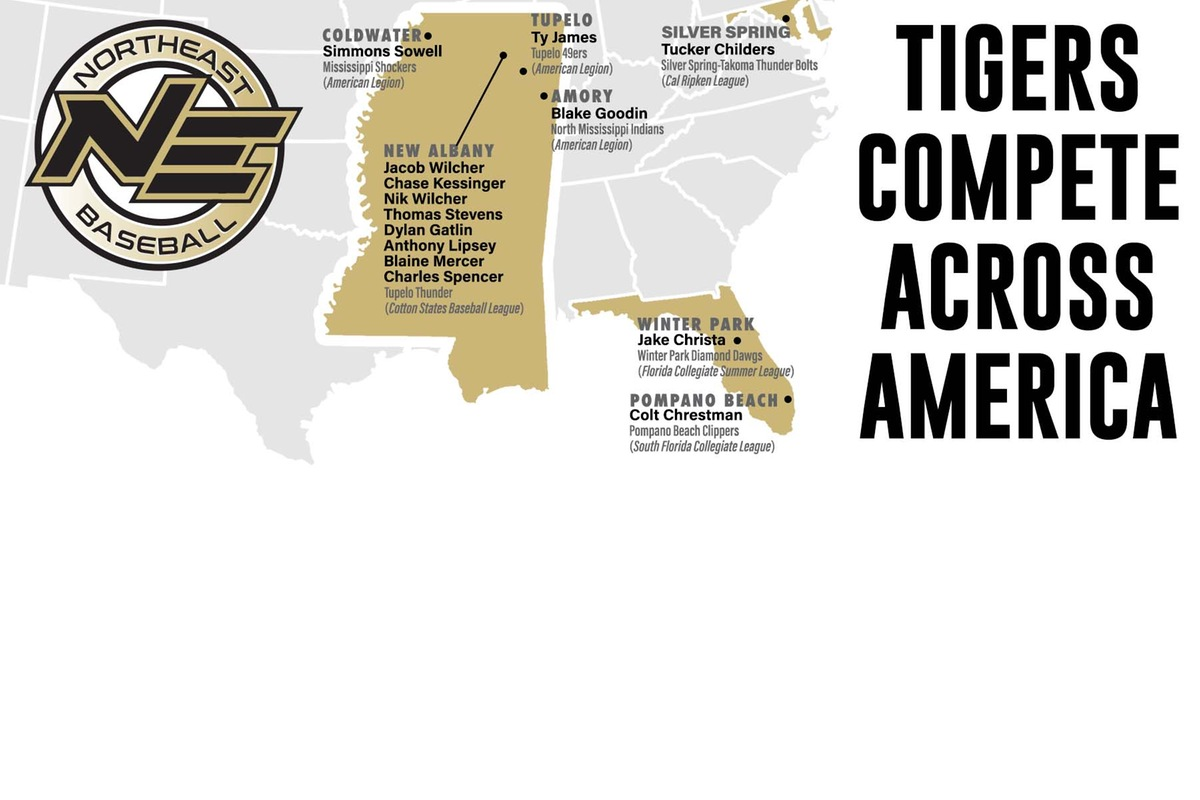 Tigers Competing For Summer Baseball Organizations Across State, Nation