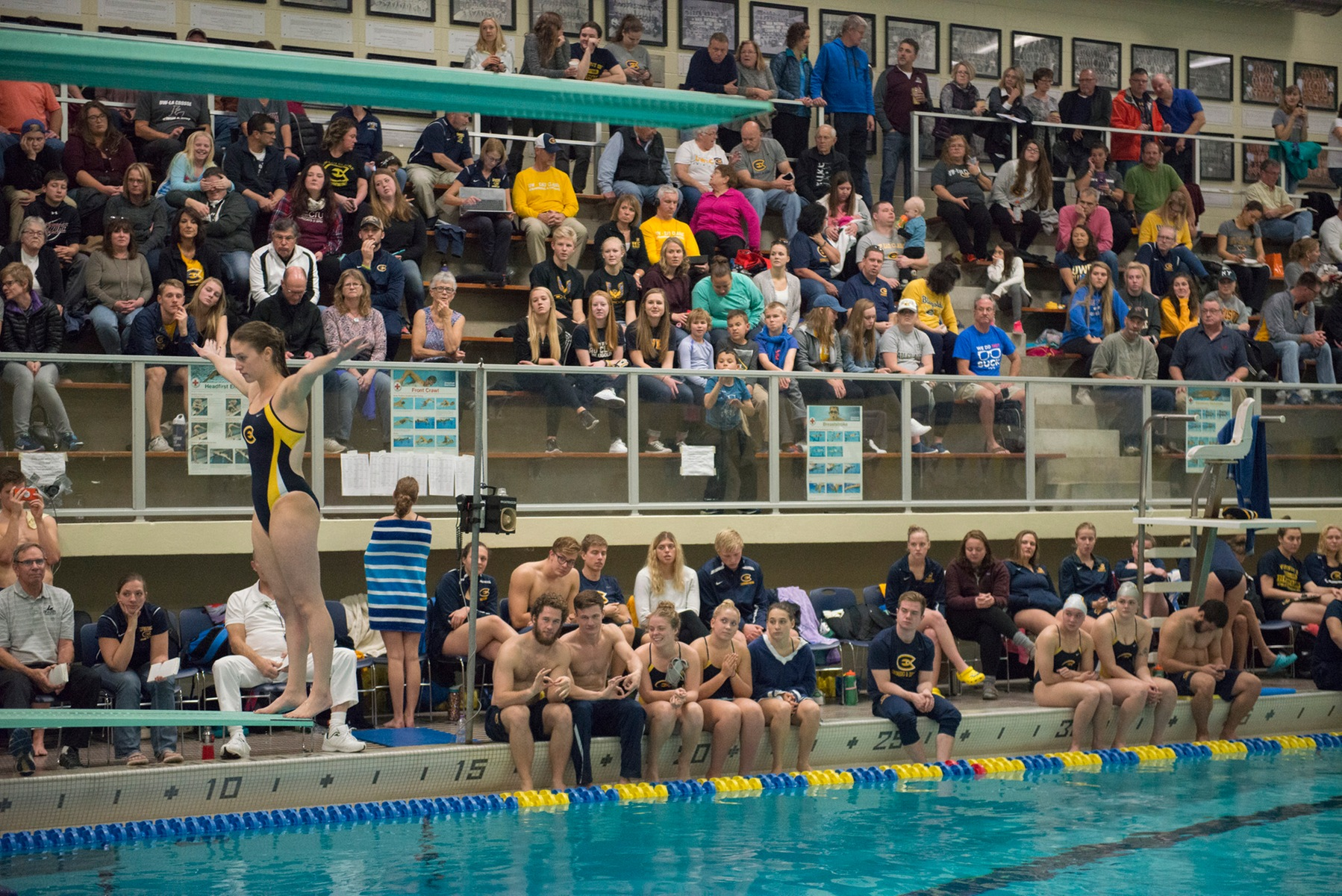 Swimming and Diving announces team awards