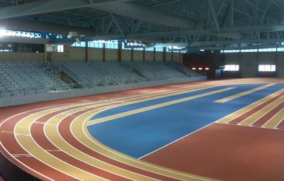 birmingham indoor track meet 2013