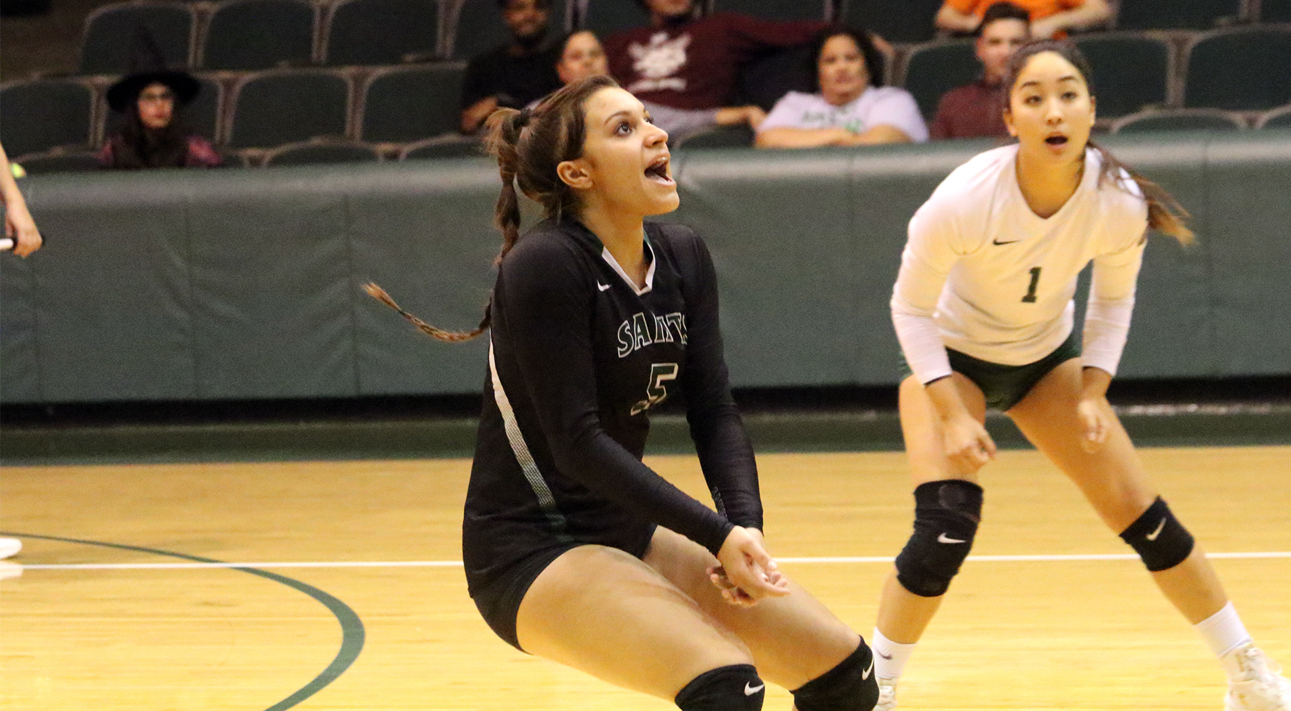 Lady Saints Volleyball Advances to Region VI Semifinals