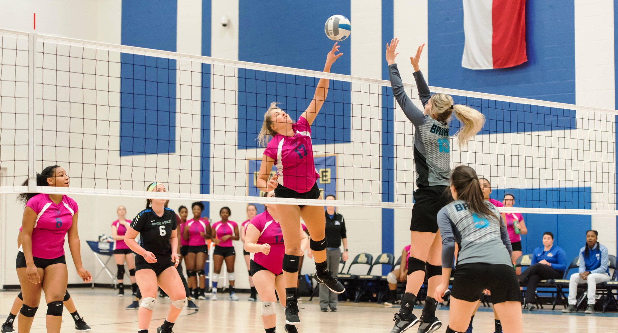 Volleyball Dominant In Regular Season Finale