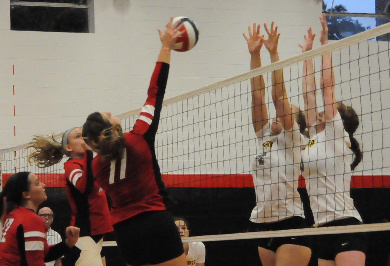 Volleyball: Panthers host Oglethorpe in newly named Lee Richter Gymnasium