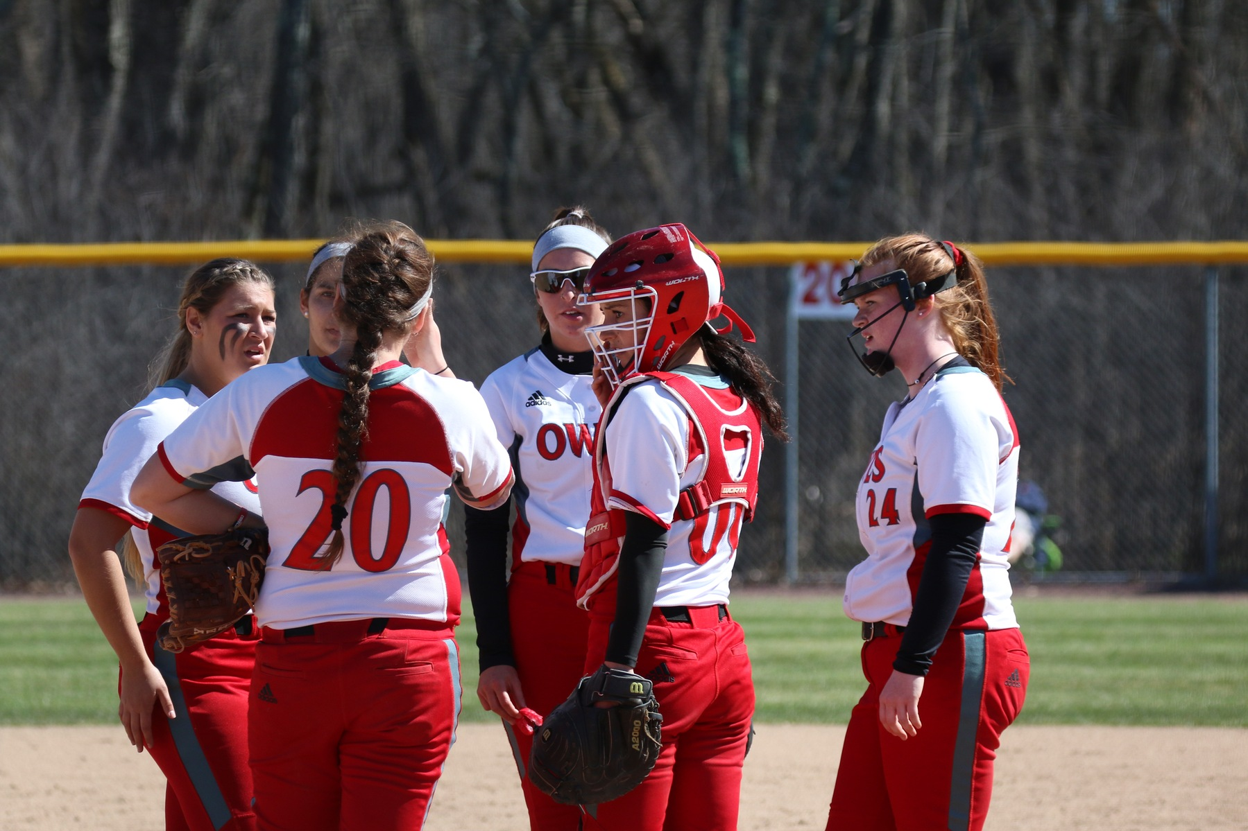 Softball Swept In Conference Doubleheader By Plymouth State