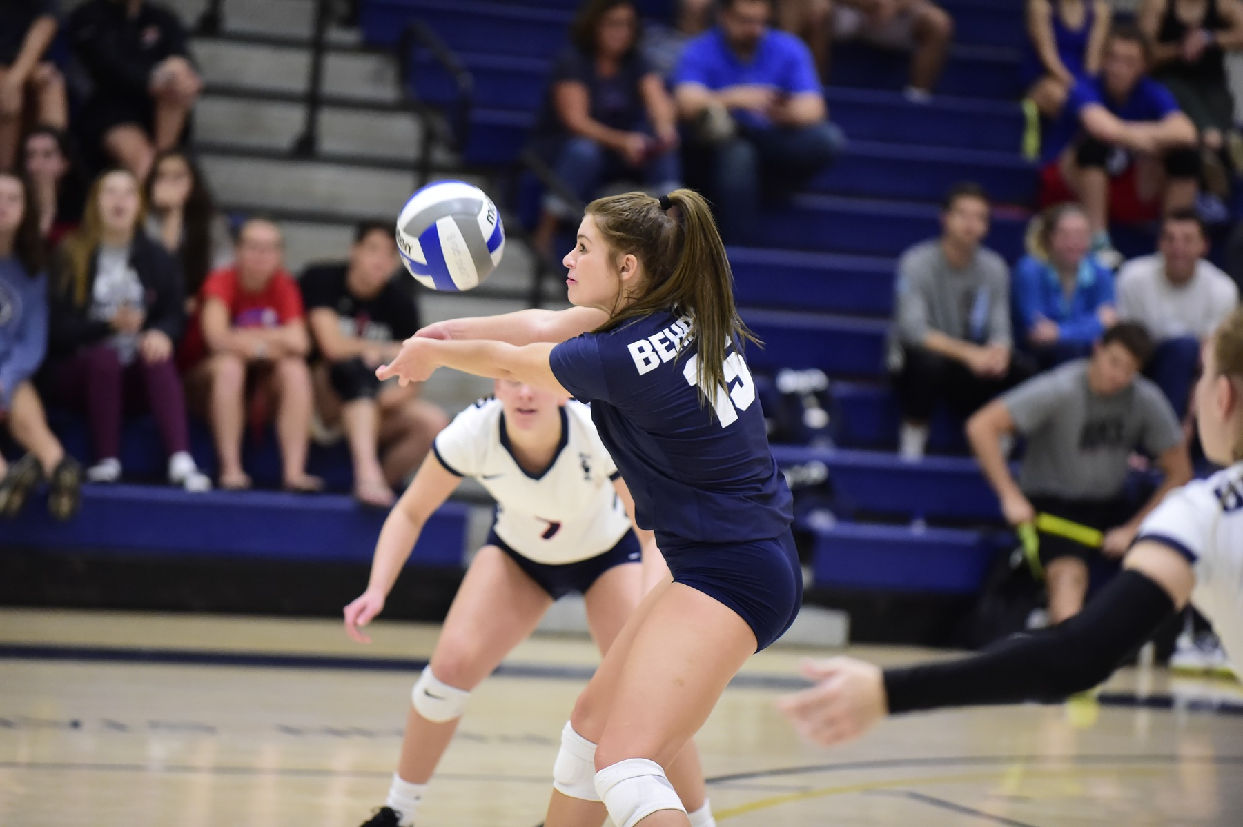 Women's Volleyball Defeats Wilkes in Three; Lions Advance to ECAC Quarterfinals