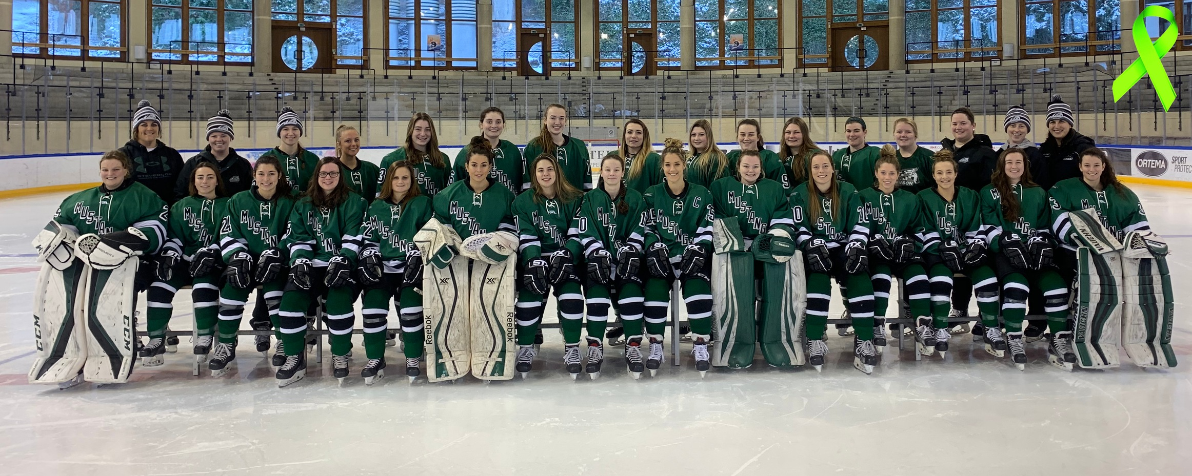 Women's Ice Hockey to Host Mental Health Awareness Game on Saturday