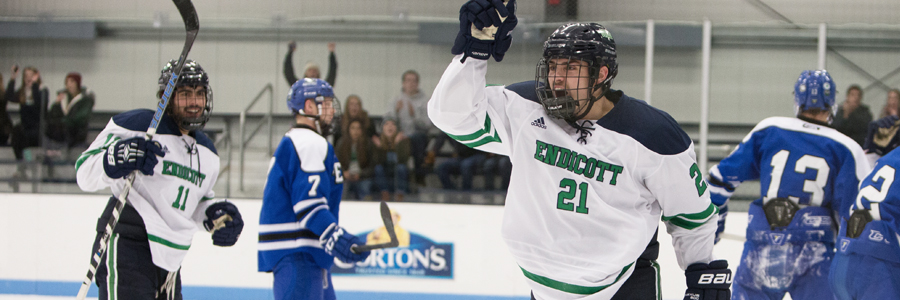 Endicott men's ice hockey celebrating a goal