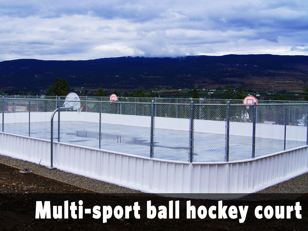 Multi-sport ball hockey court