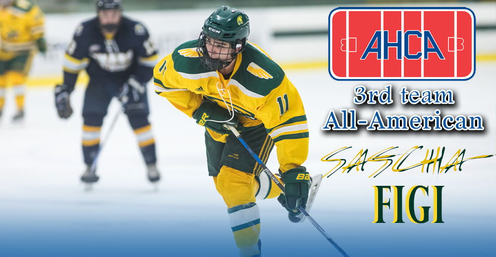 Figi Named 2018-19 CCM/AHCA Men's DII/III Ice Hockey All-American