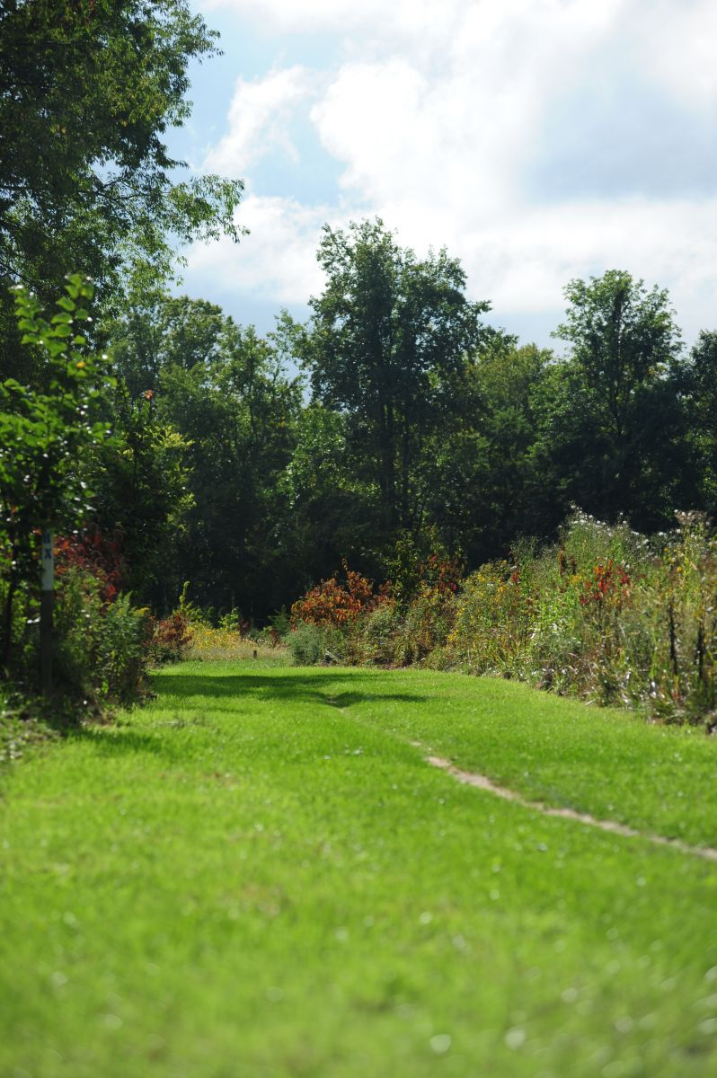 Cross Country Course Berea College Ky