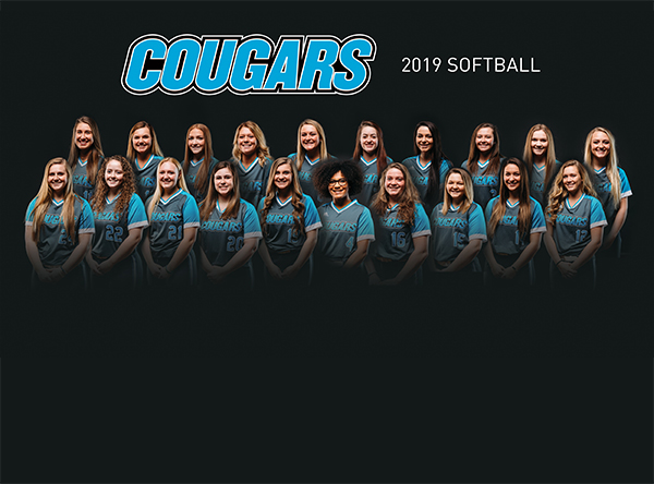 2018-2019 Kalamazoo Valley Softball Team