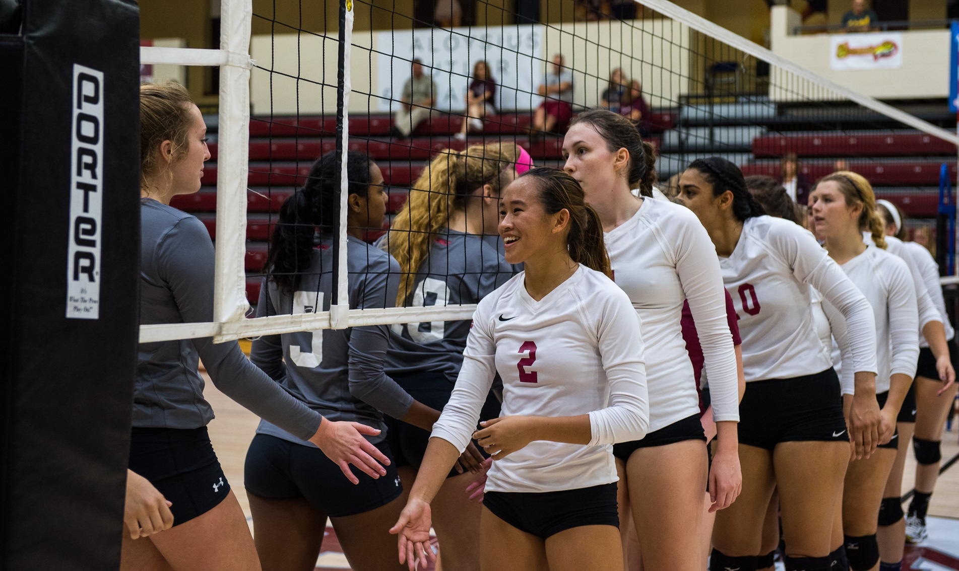 Volleyball Hangs Tough with Preseason CACC Favorite Jefferson