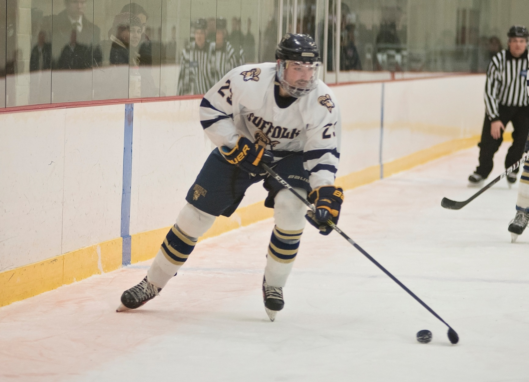 Miller's Goal Lifts Men's Hockey Past Wentworth, 1-0