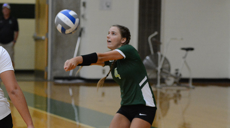 Youth movement serves @DubC_Volleyball well