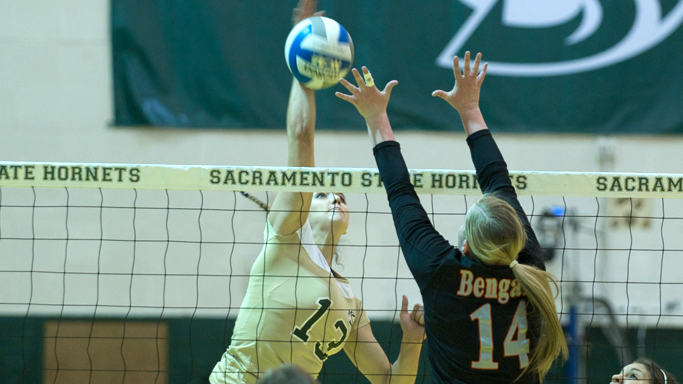 VOLLEYBALL FALLS TO IDAHO STATE, WILL PLAY HOME FINALE TOMORROW