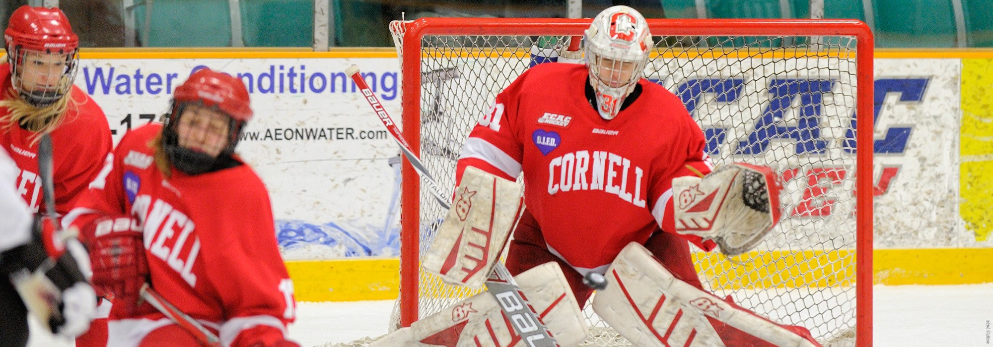 Cornell Falls to Clarkson in NCAA Quarterfinals