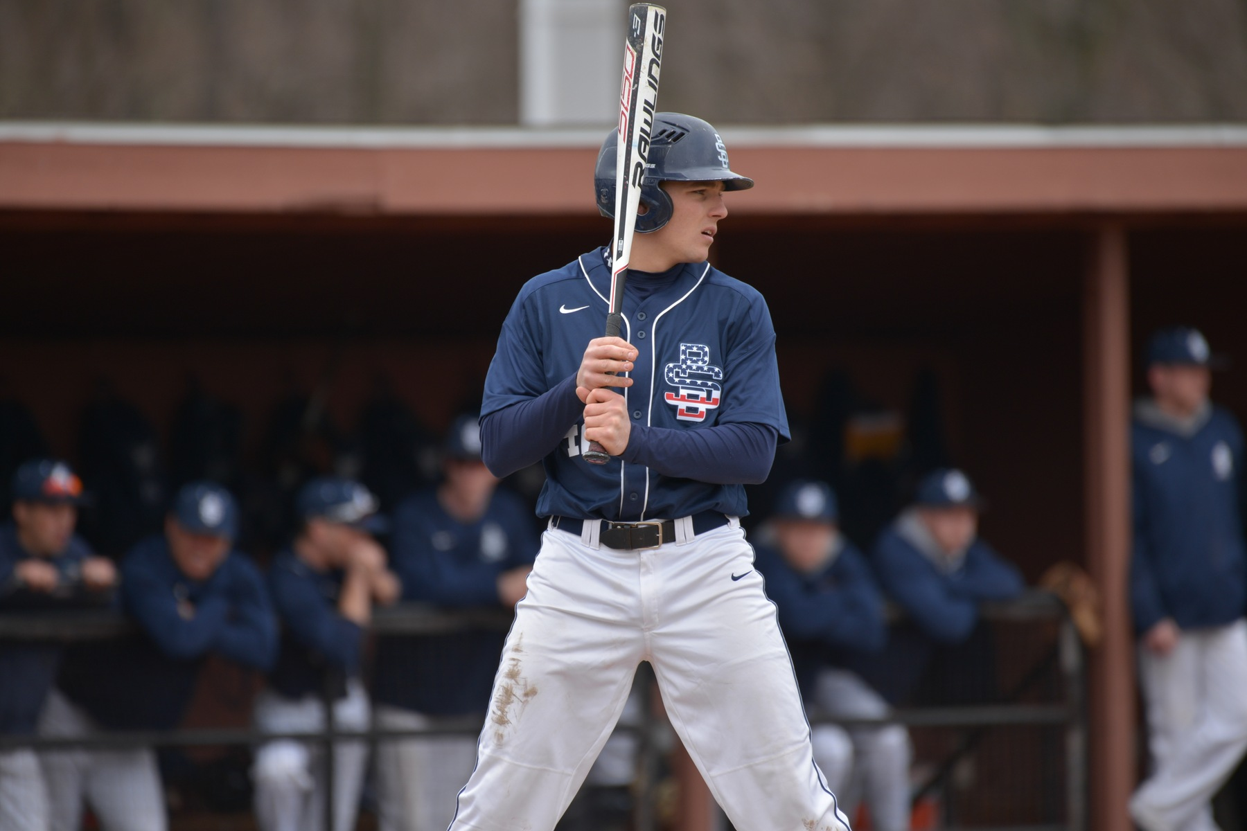 Behrend Baseball Splits With Pitt-Greensburg