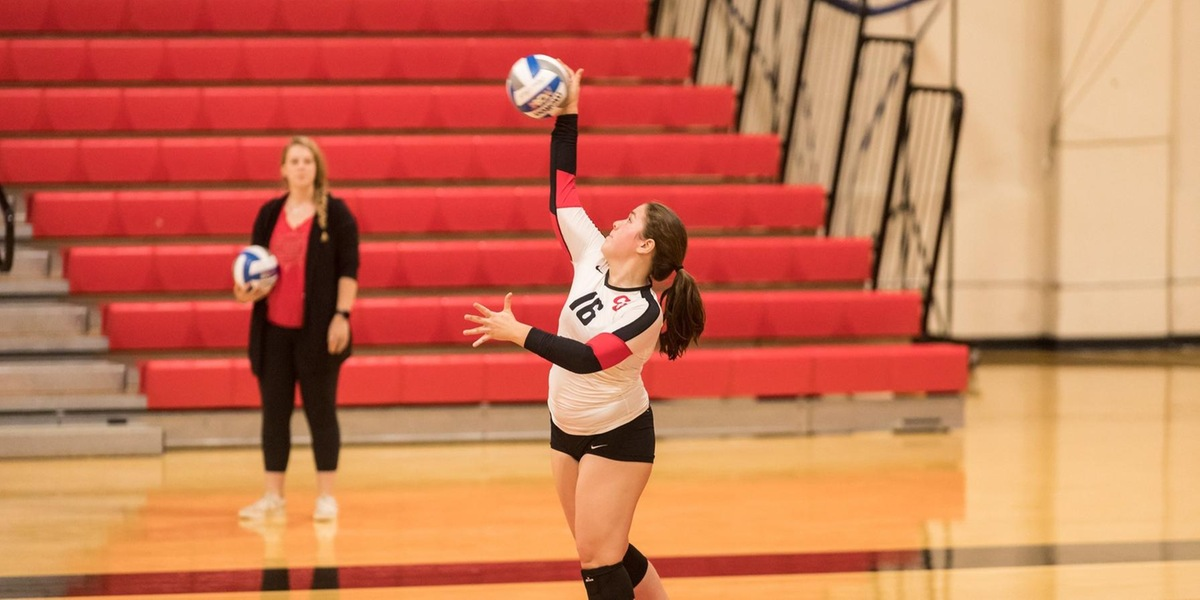 Volleyball Faces Setback at Wellesley