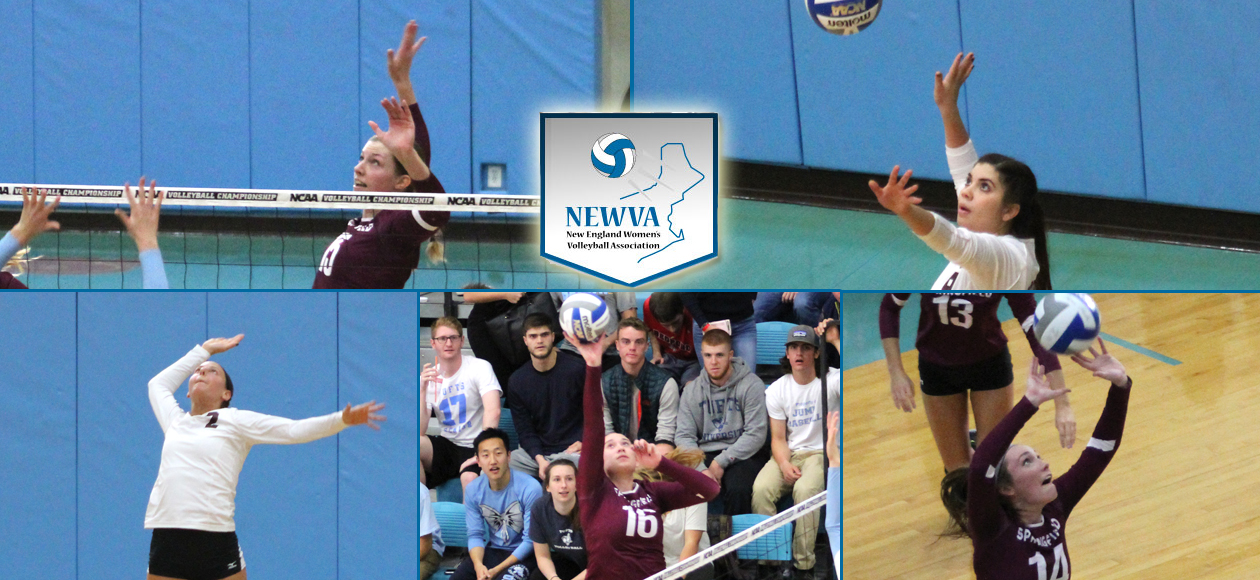 Holt's Player of the Year Honor Highlights NEWVA Recognitions For Women's Volleyball Program