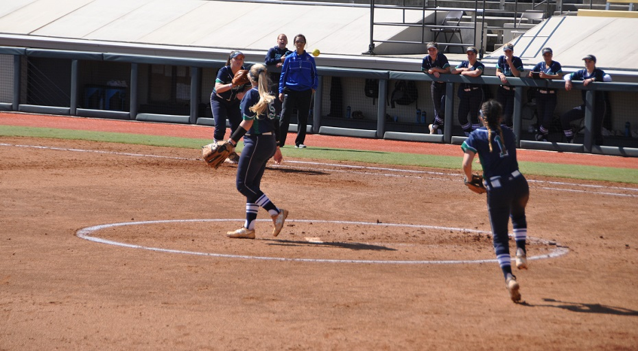 Softball Falls to Chipola