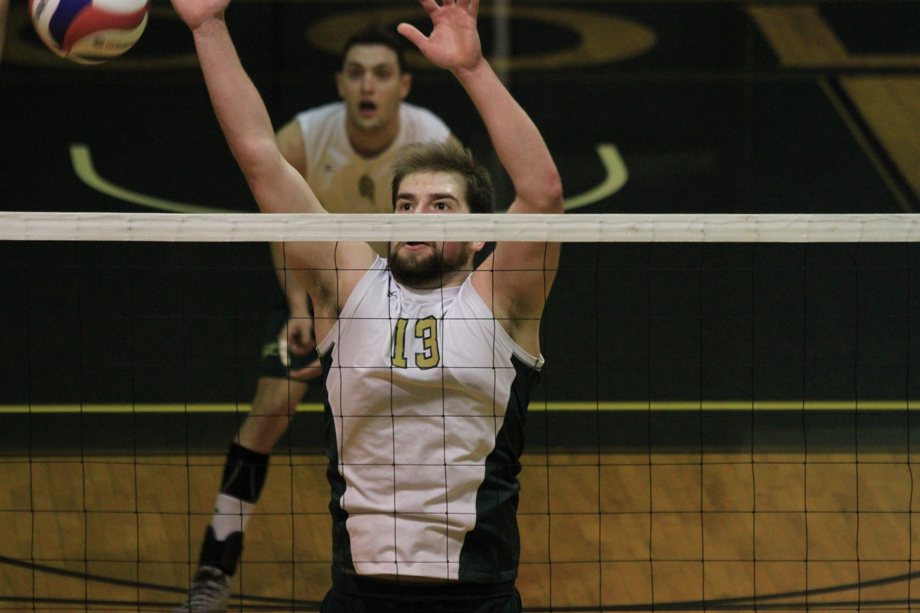 Men's Volleyball Splits Tri-Match At MIT