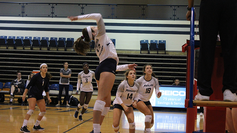Volleyball Takes First Loss of 2019