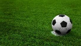 South Effingham Edges Boys Soccer Team