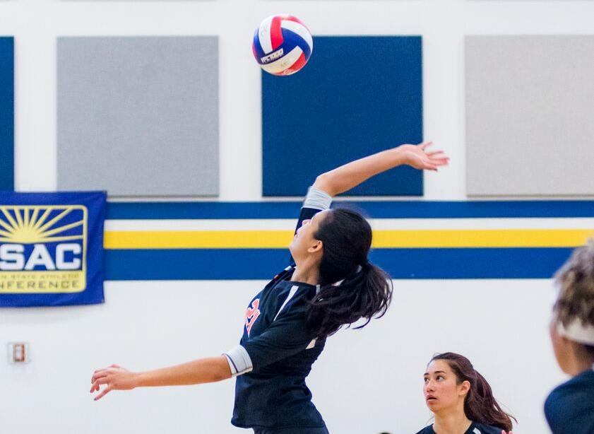 Noyes' Monster Day Leads to Two Volleyball Victories