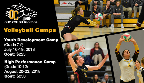 Register for the 2018 Volleyball Skills Camps