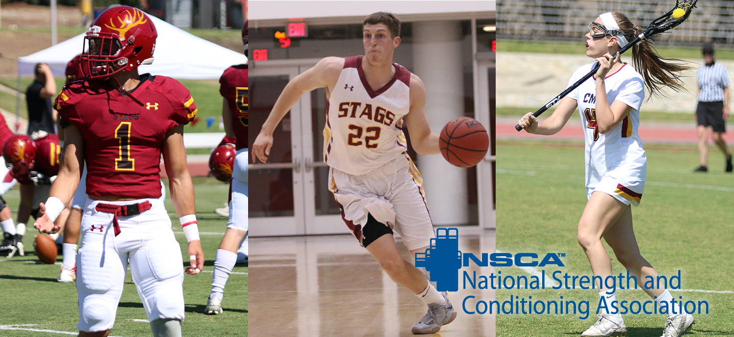 Three Student-Athletes Named NSCA All-Americans
