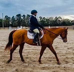 Equestrian Results: Georgia Southern University
