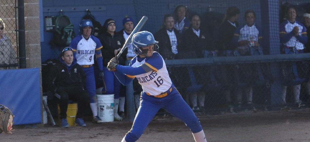 Softball Drops a Pair at Wheaton