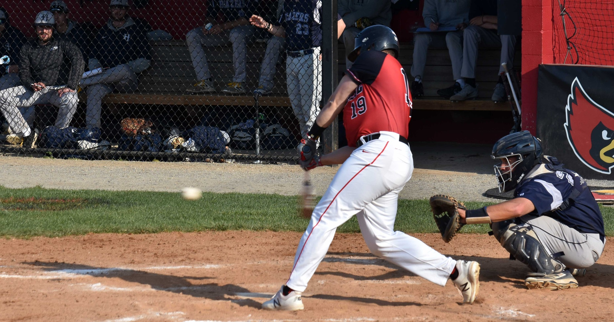 Cardinals Downed by Mustangs, 8-2