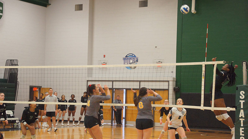 Women's Volleyball Lays It All Down against Catawba