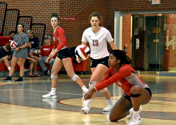 Senior April Reese had 17 kills and 15 digs in Friday's USA South Tournament semifinal loss to Averett.