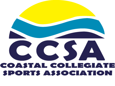 About the CCSA