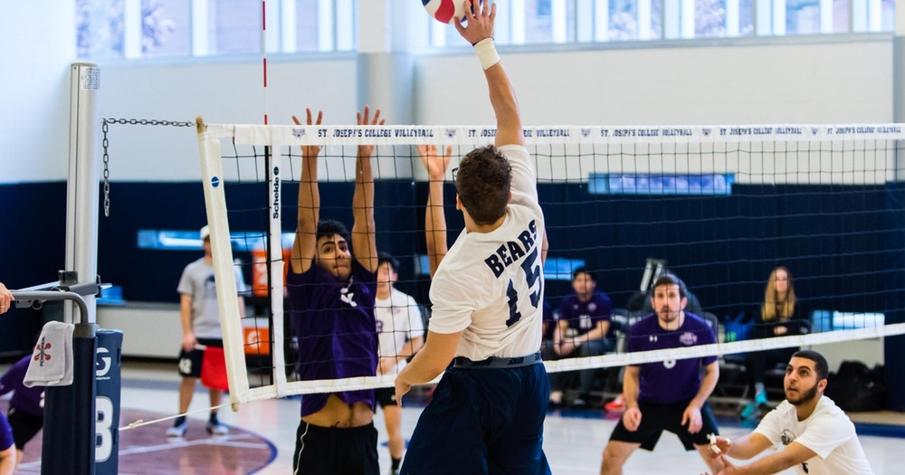 Bulldogs Take Brooklyn Battle From Men's Volleyball