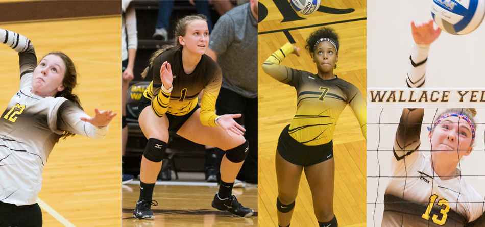 Four Volleyball Players Earn All-OAC Honors