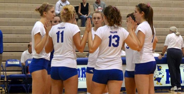 Volleyball selected seventh in NAC Preseason Coaches' Poll
