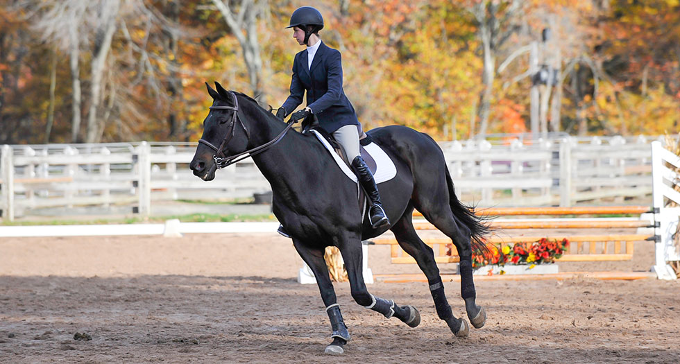 Riding Wins Home Show; Finnerty Earns High Point Rider Honors