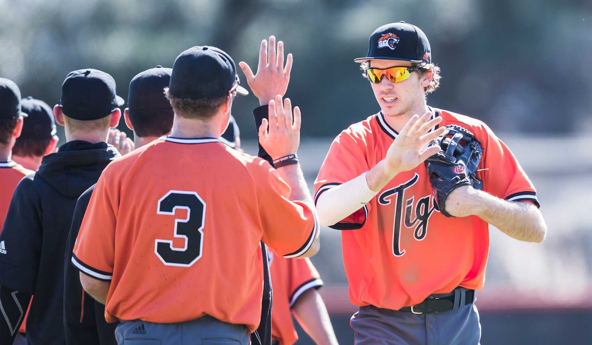 Tigers Bounce Back Against Bowdoin