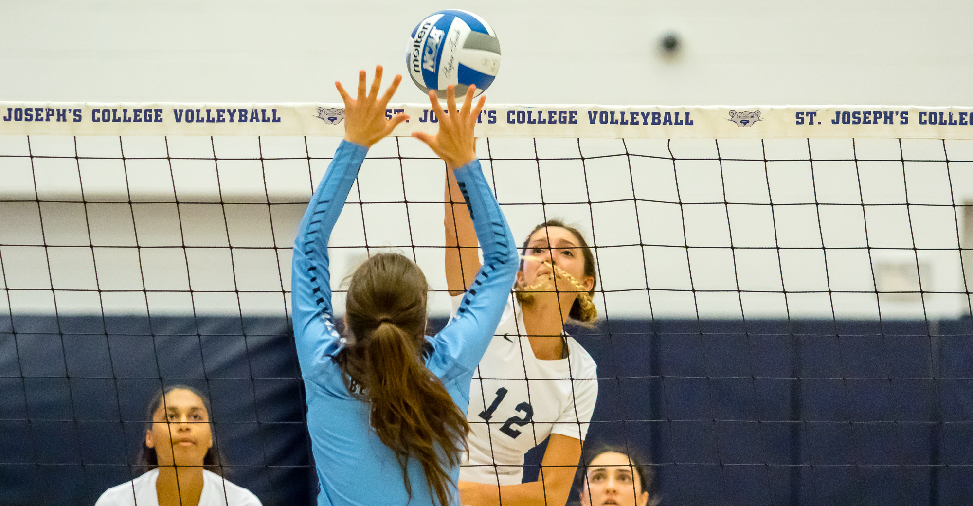 Four Bears Record Double-Doubles as Women's Volleyball Takes Down CSI to Split Tri-Match