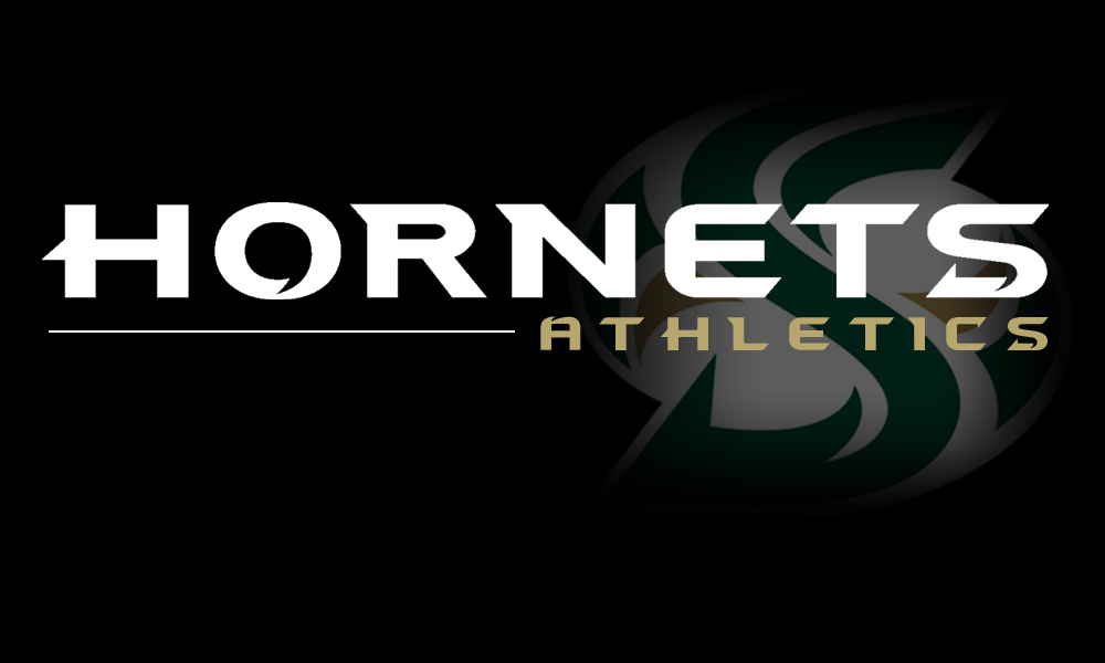 HORNET STUDENT-ATHLETES EARN EXACTLY 100 SPRING ALL-ACADEMIC HONORS